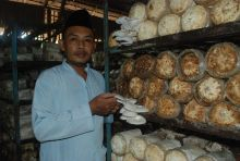 Gagal Dagang Jamur, Malah Sukses Buka Restoran Spesial Jamur