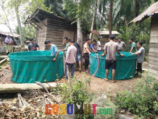 Mewujudkan Swasembada Ikan Tawar, Karang Taruna Budidaya Ikan Lele