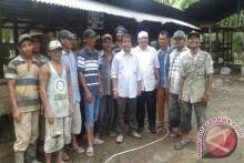 Tapanuli Selatan Pilot Project Sapi Brahman Cross
