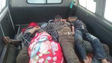 Pulang dari Riau, 5 Penumpang Kijang Kapsul Tewas dan 1 Kritis