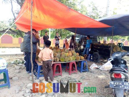 Durian Sumatera Barat Mulai Marak di Pinggir Jalinsum Sibuhuan, Buyung pun Untung